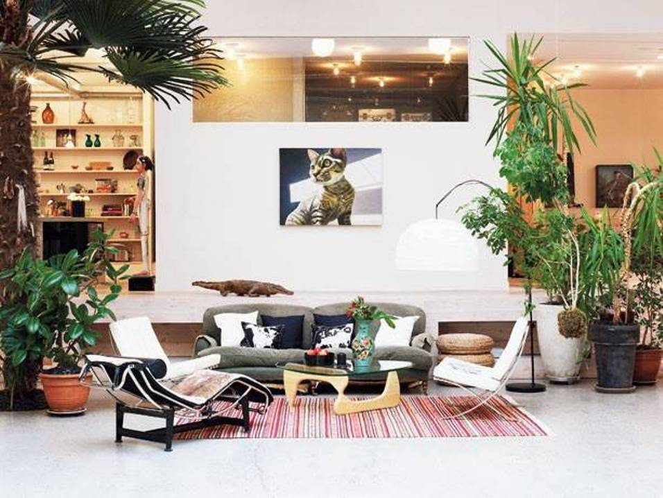 living-room-decorating-without-windows-with-houseplants